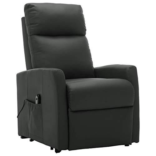 Tidyard Elektrischer Liegesessel Relaxsessels-liegen Sessel Mit Aufstehhilfe & Liegefunktion,Aufstehsessel Fernsehsessel Polstersessel Stühle & Sessel mit Rollen ausgestattet,100-240 V, 50/60 Hz